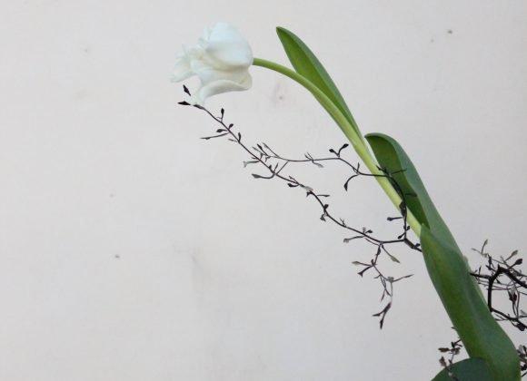 "Ikebana: l'antica arte giapponese dei ""fiori viventi"""